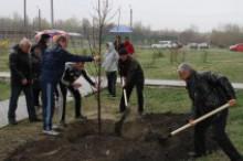 """Всеукраїнська акція """"Посади дерево миру - 2019"""""""